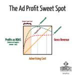 Maximum profit not equal maximum revenue